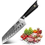 SHAN ZU Couteau de Santoku Damas, Couteau de Cuisine Damas, Couteau Japonais en Acier Damas AUS-10 67 Étages, Manche G10, Lam