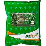 CULTIVERS ECO10F00130 Abono Ecológico de 5 Kg Coníferas y Setos (Pinos, Abetos, Cipreses y Tuyas). Fertilizante de Origen 100