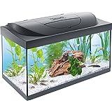 Tetra Starter Line Aquarium-Komplettset mit LED-Beleuchtung stabiles Einsteigerbecken mit Technik, Futter und Pflegemitteln, in verschiedenen Größen