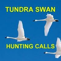 Tundra Swan Waterfowl Hunting Calls