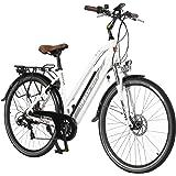 """AsVIVA E-Bike 28"""" Trekkingrad, CityBike Tiefeinsteiger (14,5Ah Samsung Akku), 7 Gang Shimano Schaltung, starker 250W…"""