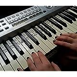 Autocollants pour notes de piano Solfège Transparent Do Re Mi Fa.