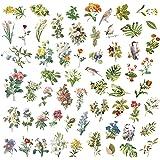 120 Pack d'Autocollants, Autocollants Décoratifs Transparents, Stickers Motifs Conte de Fées Plantes Fleurs Rétro, pour Les O