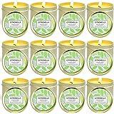 SCENTORINI Bougies Citronnelles, Cire de Soja Naturelle Bougies d'Intérieur et d'Extérieur Jardin Terrasse Pique-Nique pour É