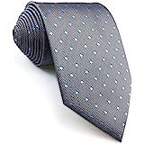 shlax&wing Herren Tie Gris Azul Puntos Krawatte Herren Seide Traje de negocios