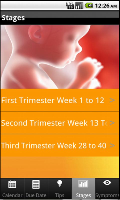 Pregnancy-By-Week