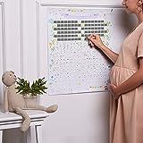 Calendario della gravidanza, ogni giorno una casella da grattare per scoprire informazioni, curiosità e consigli sui 9 mesi p