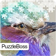 Bold Bird Jigsaw Puzzles