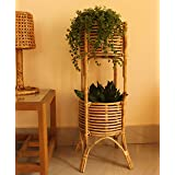 Zilver Handmade and Handcrafted Cane Flower Pot Plant Stand Vases Planters for Indoor Plants Patio Living Room Balcony Cafe G