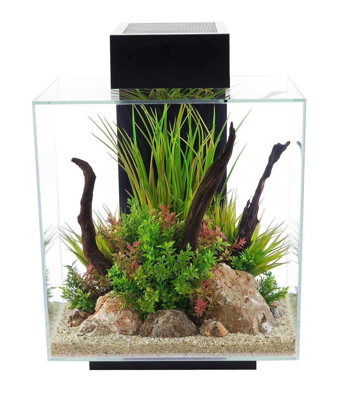 81IQ3mfGKNL._SL1500_ Frais De Aquarium tortue Aquatique Schème