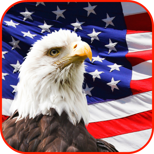 USA Wallpaper (Star Flag Service)