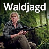 Wald Jagd