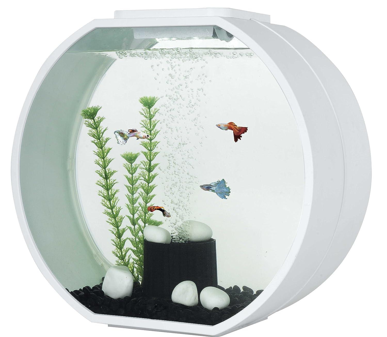 Fish Tank Fish R Fun Deco Fish Tank 20 Litre Black Amazoncouk Pet Supplies