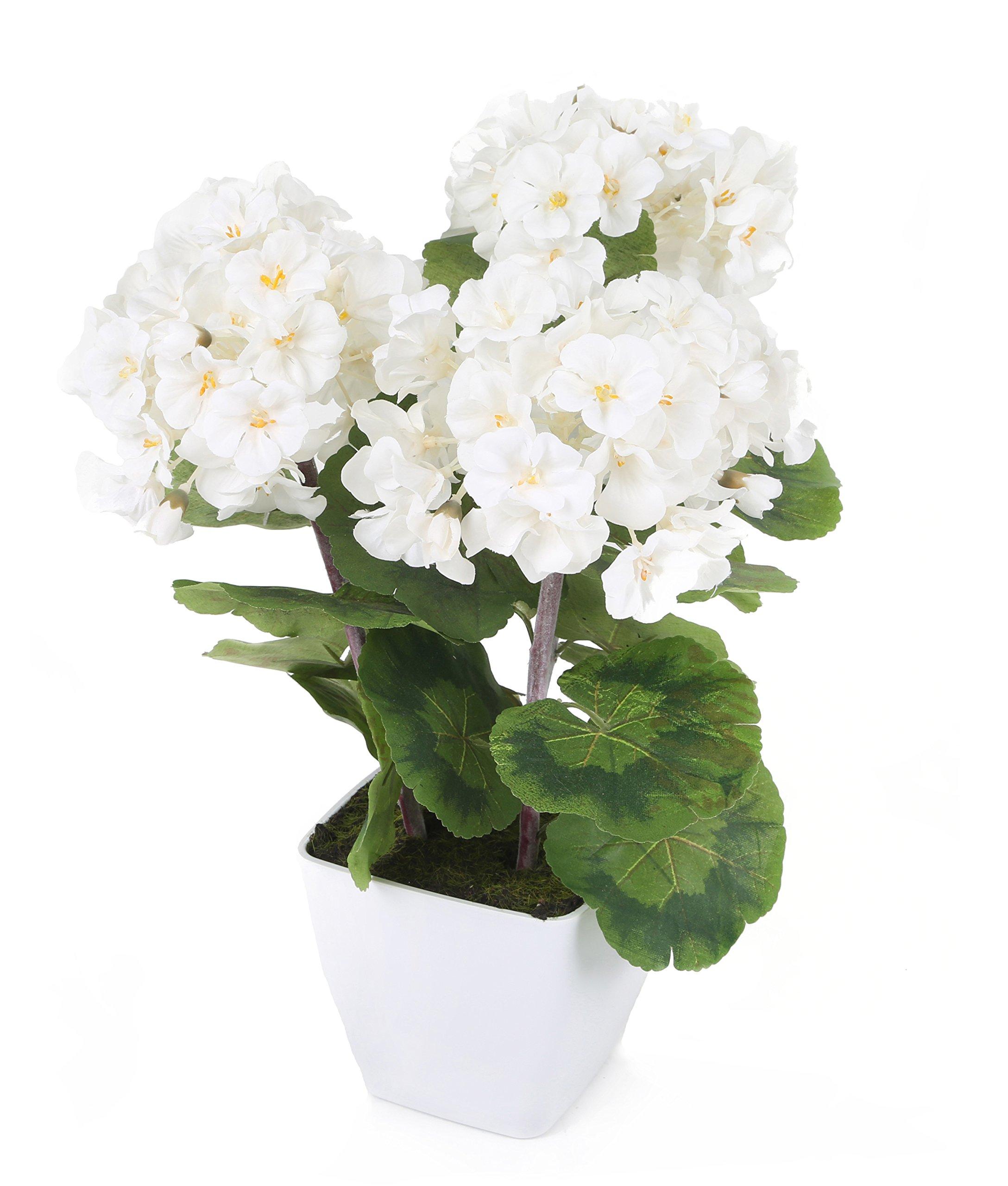 Closer To Nature FP023WS – Planta de Geranio Zonal, 37 cm, color blanco