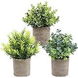 THE BLOOM TIMES Lot de 3 Petites Plantes artificielles en Pot en Plastique Faux Verdure Faux Plantes dans des Pots pour Rusti