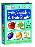 Creative Educational Aids P. Ltd. Fruits, Vegetables and Their Plants