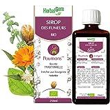 HerbalGem | Sirop des Fumeurs | Pour le bien-être respiratoire du fumeur | 250 ml