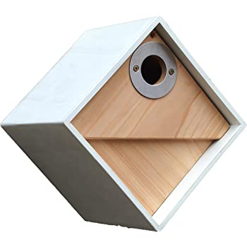 Bird Supplies Official Website Wooden Nest Box Sale Overall Discount 50-70%