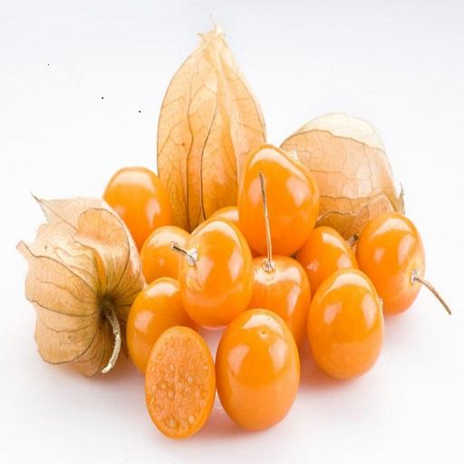 PHYSALIS Fruit Application