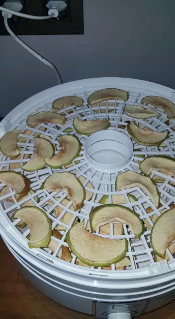 Deshidratador Alimentos 500W Aicook, Deshidratadora de Frutas 5 Bandejas Altura Regulable, Superficie Opaca Previene La Luz Nociva, 40-70ºC para ...