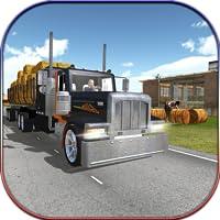 Bauernhof Transporter LKW 2017 3D