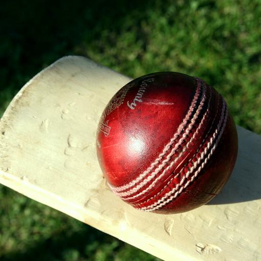 Stick Cricket: gioco libero