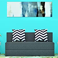 Dr Smith Sofa Cum Bed 3x6 one Seater Sofa Moshi Fabric - Perfect for Guests and Living Room Black