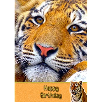 Tiger Birthday Card 8x55 Mix Match On 8x55 Cards Any 3