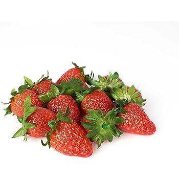 GODHL 20Stk k/ünstliche gef/älschte Lebensmittel Obst Erdbeere 3 cm W cm * 2.5 H