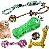Jouet Pour Chien Ensemble Lot de 6 , 5 Durables Coton Mâcher Corde Jouet,One jouet chien indestructible en Forme de Crocodile