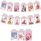 TOYXE 1st Birthday Baby Photo Banner for Newborn to 12 Months, Monthly Milestone Photograph Bunting Garland, First Birthday C