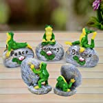TIED RIBBONS Set of 5 Frog on Stone Showpiece for Living Room Home Outdoor Garden Decoration