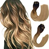 Remy Clip in Human Hair Extensions Dark Brown to Chestnut Brown and Ash Brown Ombre Clip in Real Hair Extensions Double Weft