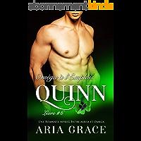 Oméga à l'Emploi: Quinn: Alpha Omega M/M Non Shifter MPreg Romance