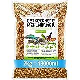 MeerBach & Rose vers de Farine Séchés- 2 kg = 13 L - Nourriture pour Poissons, Oiseaux Tortues, Hérissons, Rongeurs et Reptil