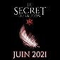 Le Secret du Faucon: Tome 4