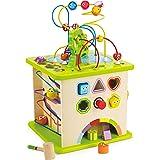Hape- Cubo con Animaletti Gioco, Multicolore, E1810