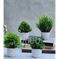 Litleo Set of 4 Mini Decorative, Home Office or Gift Bonsai Wild Artificial Plant with Pot Green