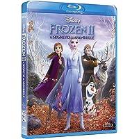 Frozen II Il Segreto di Arendelle ( Blu Ray)