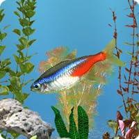 aniPet Freshwater Aquarium Live Wallpaper (Free)