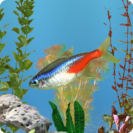 aniPet Freshwater Aquarium Live Wallpaper (Free): Amazon.co.uk: Appstore for Android