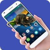 Mouse che funziona nel telefono