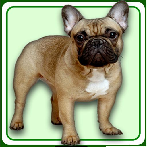 3D Sound Dog Whistle -
