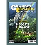 Picos de Europa. Macizo Oriental. Excursiones y ascensiones: Grandes Espacios 254