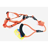 Canine Products Pet Orange Harness & Leash-Small (2-12 Months)