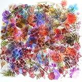 Autocollants Fleurs Plantes Rétro 320 PCS,Autocollants Décoratifs Transparent Scrapbooking,Autocollants Scrapbooking Nature,S