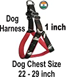 ADIOS Dog Belt 1 inch Designer Padded Green Dog Body Harness Adjustable Chest Size 22-29 inch Dog Body Harness for Your…