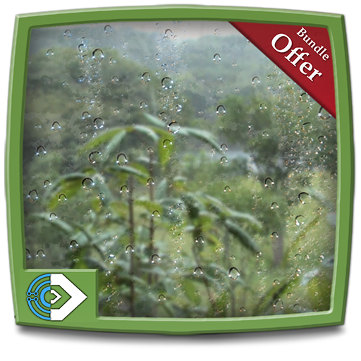 Rainy Jungle HD - Decor your Fire TV Screen with cool rainy forest