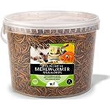 UGF – Les vers de Farine séchés Premium, Seau de 3 litres, collation d'Insectes pour Oiseaux Sauvages, Hamsters, hérissons, R