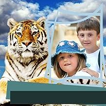 Marcos de fotos de Zoo Animals